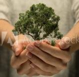 Crédits carbone – Gas à Effet de serre